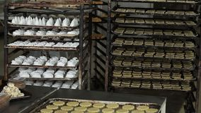 Cookies in the bakery. Trays of cookies in the bakery stock footage
