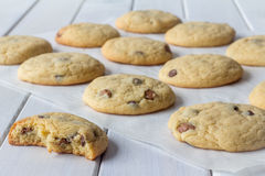 Cookies on Baking Paper with One Partly Eaten Royalty Free Stock Photo