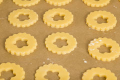 Cookies on a baking plate Stock Image
