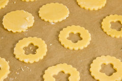 Cookies on a baking plate Stock Photography