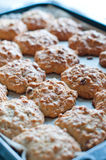 Cookies on a baking tray Stock Images