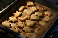 Cookies on a baking tray fresh out of the oven Stock Image
