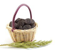 Cookies with basket and barnyard grass. I have a cookie in a small basket, and further placed next to the ear of grass to represent the season Royalty Free Stock Photography