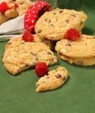 Cookies caseiros Imagem de Stock
