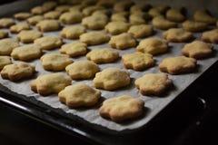 Cookies caseiros do coalho fotografia de stock