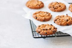 Cookies caseiros dos pedaços de chocolate em uma cremalheira de fio em uma pedra branca imagem de stock
