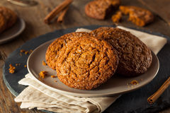 Cookies caseiros mornas de Gingersnap Foto de Stock Royalty Free