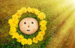 Cookies with character smiles and ladybug on the background of green grass in wreath of dandelions in the sunlight. A. Cookies with character smiles and ladybug Royalty Free Stock Photography