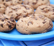 Cookies with chocolate Royalty Free Stock Photo