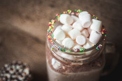 Cookies in chocolate and a bottle of cocoa with marshmallows Royalty Free Stock Photography