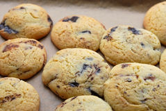 Cookies with chocolate chips Stock Images