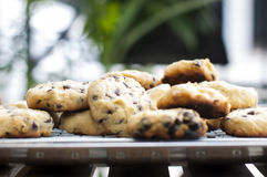 Cookies. Chocolate chips on the tray under the sunset in front of the home in Thailand stock photos