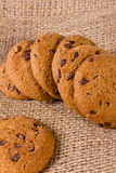 Cookies with a chocolate crumb Royalty Free Stock Photography