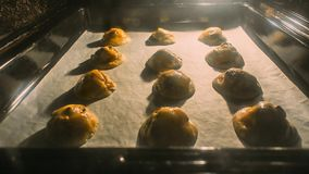 Cookies with chocolate drops. American cookies. Baking cookies i. N the oven. Balls of dough in an oven with chocolate stock footage