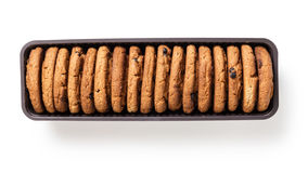 Cookies with chocolate pieces in container Stock Images