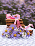 Cookies and cinnamon on the table with flowers Royalty Free Stock Photos