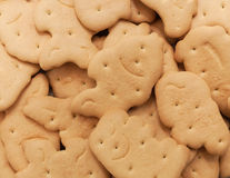 Cookies, close-up, a lot of. Cookies, close-up, many in the form of small animals Stock Photos