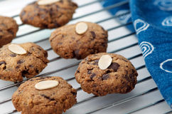Cookies on cooling rack Stock Images