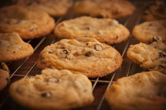 Cookies. Cooling on a wire rack Royalty Free Stock Photography