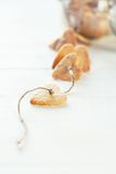 Cookies on the cord, selective focus Royalty Free Stock Photography