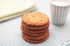 Cookies with a cup of milk Royalty Free Stock Photos