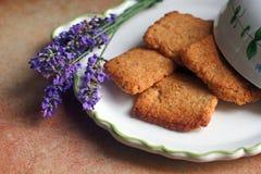Cookies da alfazema Imagens de Stock