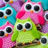 Cookies da coruja Fotos de Stock