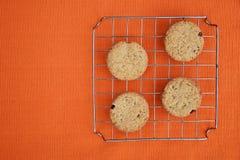 Cookies da microplaqueta das passas Imagens de Stock Royalty Free