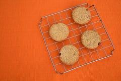 Cookies da microplaqueta das passas Fotografia de Stock