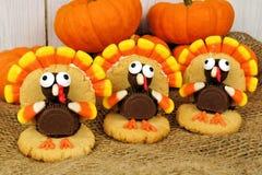 Cookies dadas forma peru da ação de graças Imagens de Stock