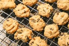 Cookies de amêndoa com pedaços de chocolate Foto de Stock Royalty Free