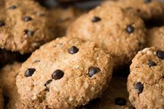 Cookies de farinha de aveia caseiros com opinião do macro do close up das gotas de chocolate Apronte para ser comido Fotografia de Stock