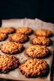 Cookies de farinha de aveia com passas Imagem de Stock