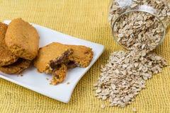 Cookies de farinha de aveia saborosos e flocos da aveia Fotografia de Stock