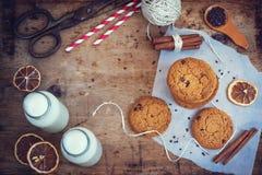 Cookies de farinha de aveia caseiros com chocolate e canela, vista superior Imagens de Stock Royalty Free