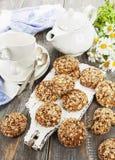 Cookies de farinha de aveia com passas fotos de stock royalty free