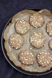 Cookies de farinha de aveia na bandeja Foto de Stock