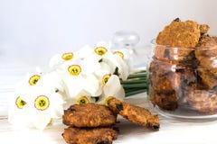 Cookies de passa da farinha de aveia e narciso recentemente cozidos Imagem de Stock