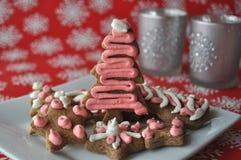 Cookies decoradas do mel do Natal no fundo do inverno com flocos de neve Fotografia de Stock Royalty Free