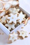 Cookies decoradas em uma caixa Fotografia de Stock Royalty Free