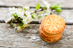 Cookies. Delicious home made cookies and spring flower on wooden background Royalty Free Stock Image