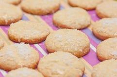 Cookies do coco. Imagens de Stock Royalty Free