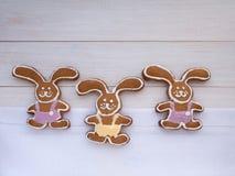 Cookies do coelhinho da Páscoa Fotografia de Stock