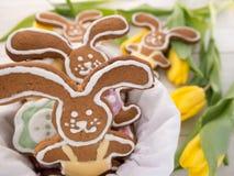 Cookies do coelhinho da Páscoa Foto de Stock