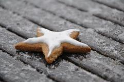 Cookies do inverno Foto de Stock