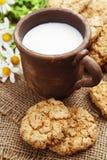 Cookies do leite e de farinha de aveia Foto de Stock Royalty Free