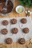 Cookies do Natal do chocolate Imagem de Stock