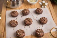 Cookies do Natal do chocolate Imagens de Stock