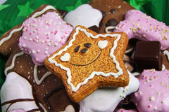Cookies do pão-de-espécie Imagens de Stock Royalty Free
