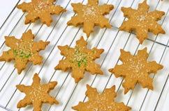 Cookies do pão-de-espécie Fotos de Stock Royalty Free